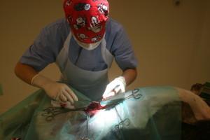 verwijdering vreemde voorwerp uit dunne darm en daarna dichthechten van darm
